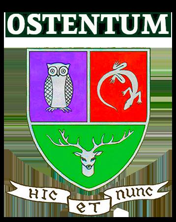 Школа Ostentum